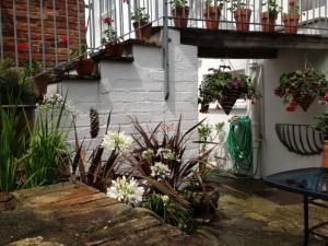 Courtyard Garden (800x600)